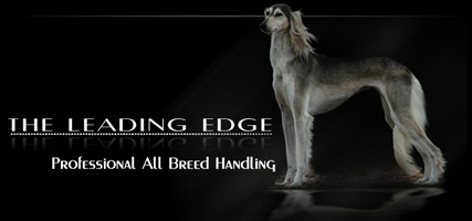 The Leading Edge Dog Show Company